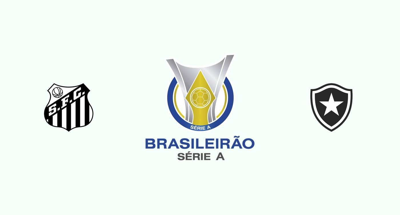 Santos v Botafogo